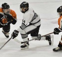 Hokejová výstroj sa skladá z viacerých častí