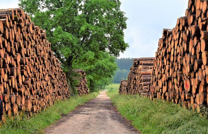 Vykurovanie domu drevom